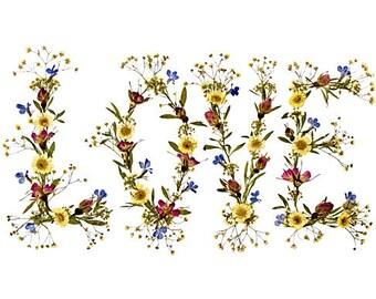 LOVE - Pressed Flower Art - 18 x 14 Fine Art Print - Sweetheart Romance - Original I LOVE YOU Design -