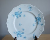 Vintage daisy print plate, Grindley & Co. 1897