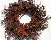 Country Autumn Eucalyptus Orange/Green Pip Berry Dried Wreath 24 in