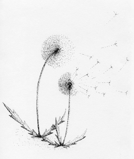 "Dandelion Duo Card - Part of the ""Dandelion Series"""
