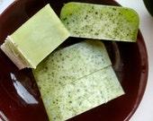 Kiwi Milk Soap Free Shipping