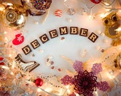 December - photography print Merry Christmas decor New Year lights garland festive ornament celebration holiday joy calendar owl gift