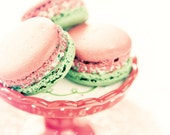 Peppermint Macarons - romantic shabby chic sweet photograph decor dessert kitchen cream pastels pink mint girl glamor for her