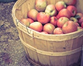 Apple Barrel - romantic kitchen decor rustic chef hostess for her valentine gift for her sweet red fruit shabby print fine art photography