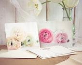 Ranunculus postcards - dreamy flower photography romantic gift for her nursery decor luxury statement pale pink botanical sunshine white