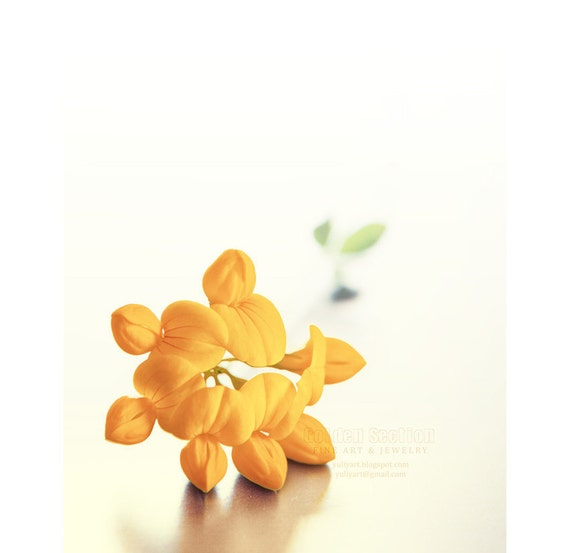 Yellow Clover - romantic flower photo print dreamy wall art blossom spring mustard gift nursery decor woman man for her him floral valentine