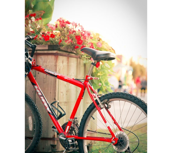 Red Bicycle - fine art photography sunny summer romantic interior home decor sport vehicle ride trip journey travel gift