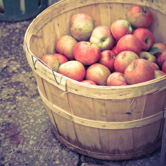 Apple barrel romantic kitchen decor rustic chef hostess for for Apples for decoration