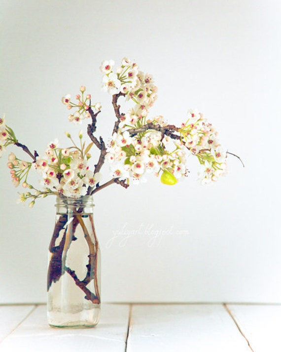 Pear Blossom - dreamy flower photography spring nursery decor wedding gift for her soft colors patels romantic white mint cream nature woman