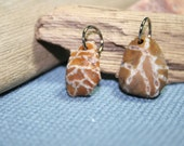 Chain Coral Beach Stone Pendants
