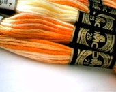 Variegated Embroidery Floss by DMC - 60 skeins