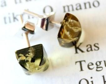Earrings; Baltic Amber Earrings, Green earrings, Christmas gift.