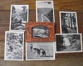 Vintage Phototone Souvenir Postcards from Wellsboro Pennsylvania Grand Canyon