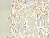 Starfish  and Rhinestone Chandelier