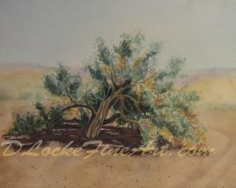 SMOKE TREE     Print of original watercolor painting.