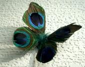 Danty Infant Newborn Peacock Butterfly Wings -- Photo Prop