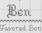 Custom Designed Cross Stitch - Ben  with Bible Meaning .pdf