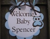 Door Sign - Welcome Baby - Blue and Brown - Owl Theme