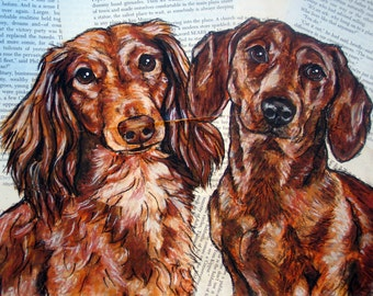 Long Haired and Short Haired Dachshund 8x10 Print