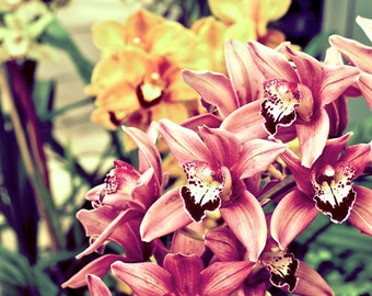 Blank Orchid Notecard
