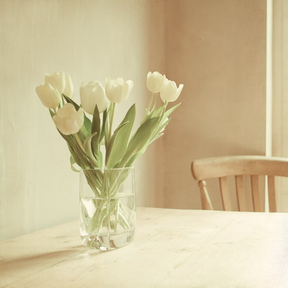"Quiet corners - 8x8"" fine art flower photography print"