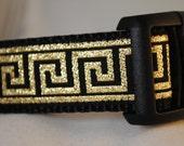 "Black with Gold Greek Key 1"" Adjustable Dog Collar"