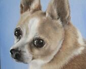 Custom Pet Portrait, 8x10 canvas in acrylics