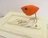 Tangerine Orange Bird   Home Decor,Nursery, Spring