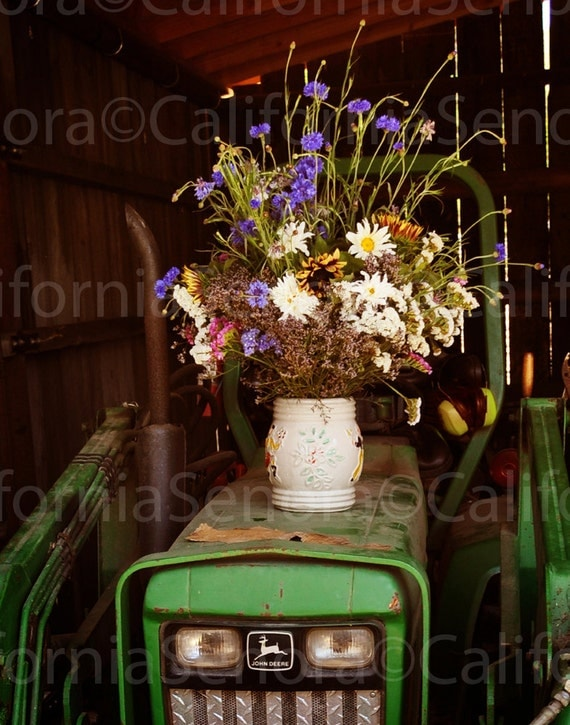 Cowboy Roses a Western Photograph 11x14 An Old Barn and A John Deere Share a Bouquet of Wild Flowers