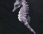 Purple Sea Horse | Watercolor | Archival Print