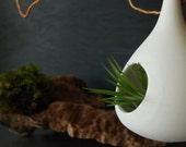 Teardrop hanging planter