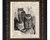 dictionary art vintage OWLS III book page print owl art print on vintage dictionary page 8x10