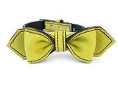 Martini Bow Tie Dog Collar / Kiwi