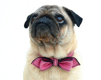 Dog Collar Pink Leather Martini Bow Tie