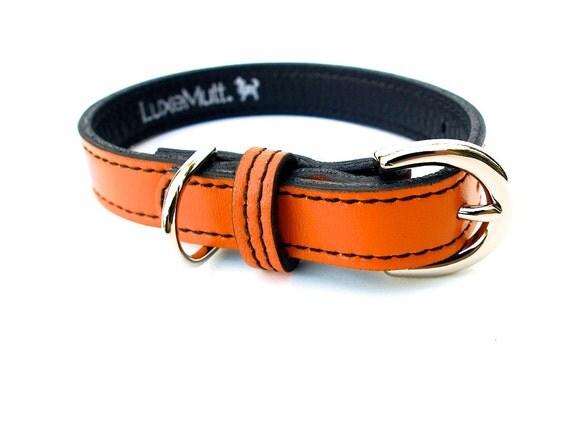 California Tangerine MINIMALIST Leather Dog Collar