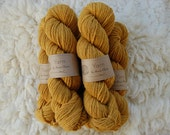 Organic Naturally Dyed Worsted Weight Yarn : Toyon