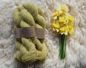 Organic Naturally Dyed Worsted Weight Yarn : Daffodil