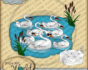 Twelve 12 Days of Christmas combo Pack - Swans Swimming, Digital Stamp and Colored Version Clipart