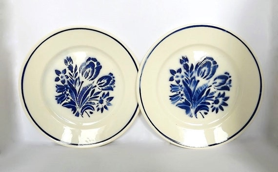 Two plates with blue flowers from France