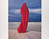 Red Wrapped Figure 2 Poster 16 x 20