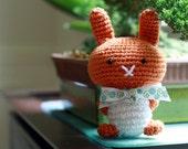 Persimmon Bunny