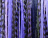 PURPLE PASSION Feather Hair Extensions Xtra Long  XL 6 and micro beads