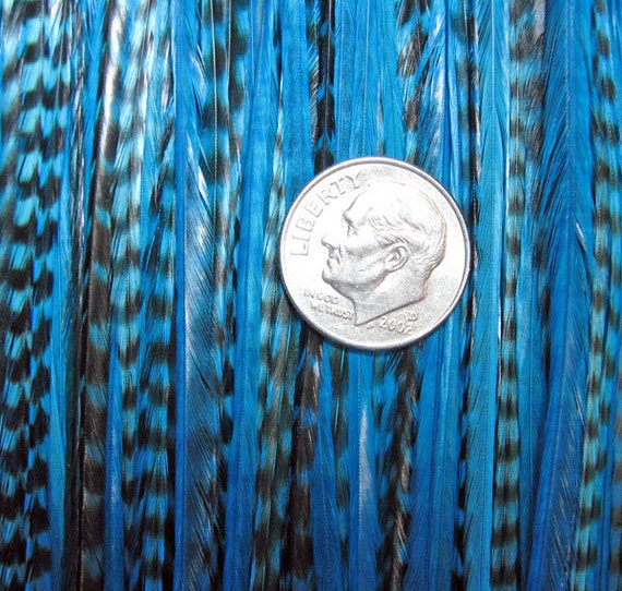 SALE 50% TAHITI Blue xl Xtra Long 5 Feather Hair Extension Micro Bead Too