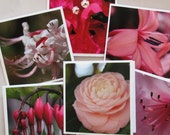 Pink flowers photo Mini Cards or Gift Tags (set of 6) / purple flower photo cards / tulip photo cards / yellow flowers