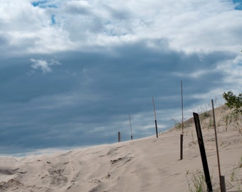Silver Lake Sand Dunes Fence Line 8x10