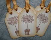 Vintage Inspired Potted Fuchsia Gift/Wish Tree Tags