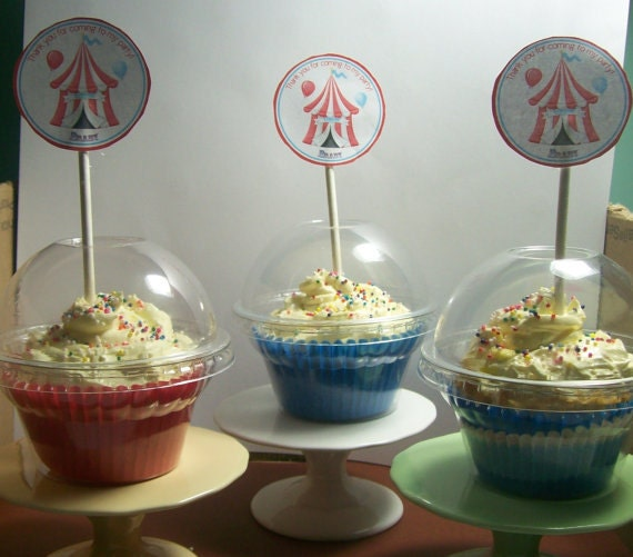 48  Clear Cupcake Favor Boxes - With Open Dome Lids for Cupcake Toppers