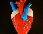 Anatomical Heart Plush - Human Heart Plush