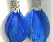Chelsea - Royal Blue Swan Feather Dangle Earrings