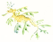 LEAFY SEA dragon 7x5inch-Art Print-animal Watercolor Print-Giclee Print